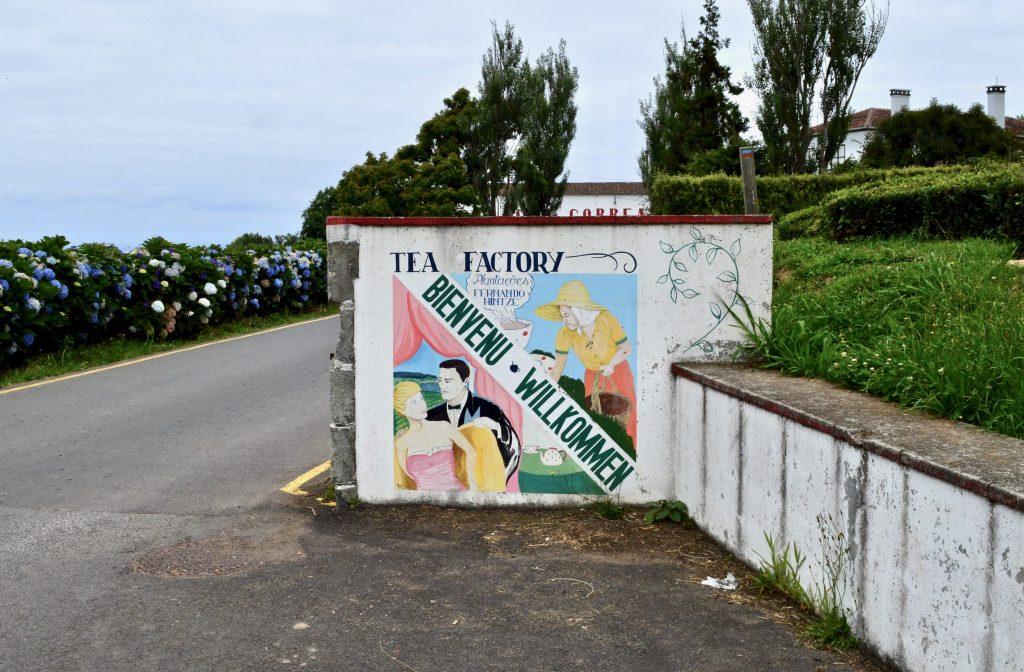 São Miguel Chá Gorreana Tea Plantation