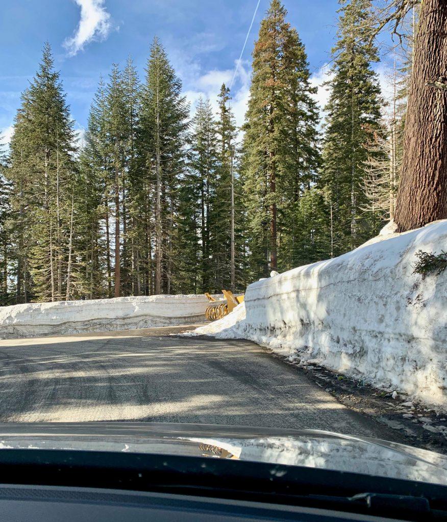 Yosemite in Spring - Badger Pass Ski Area