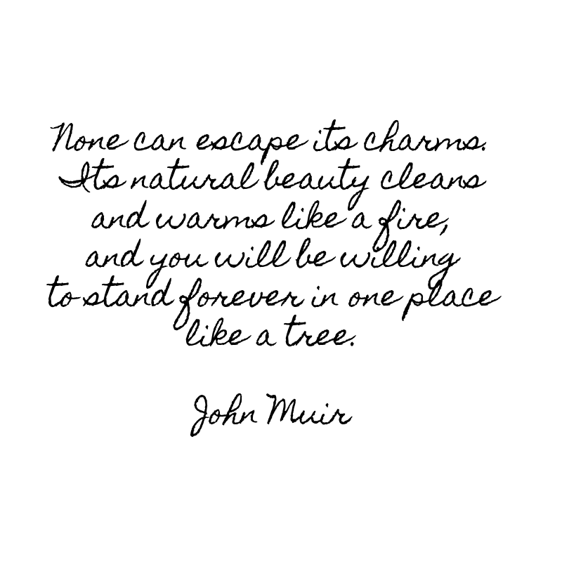 John Muir Yosemite Quote