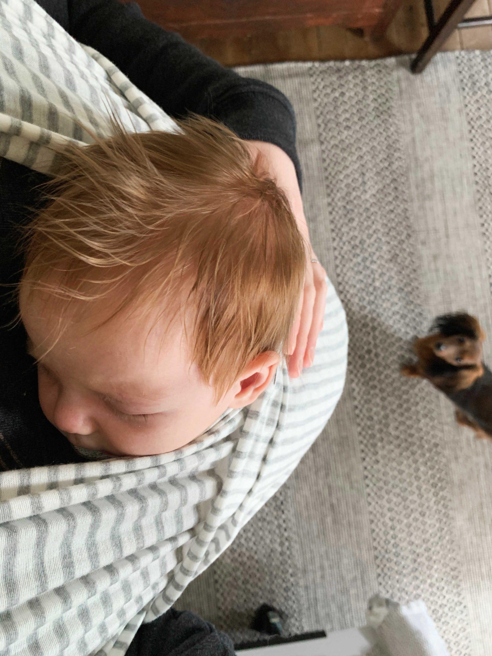 Newborn Essentials - Solly Wrap